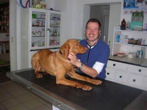 Ihr Tierarzt Dr. Falk Helber